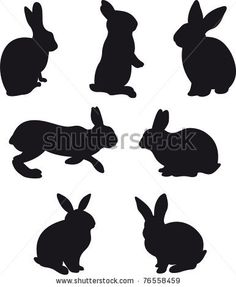 Google Image Result for http://image.shutterstock.com/display_pic_with_logo/165946/165946,1304538261,26/stock-photo--silhouettes-of-hare-and-rabbit-on-white-background-illustration-76558459.jpg