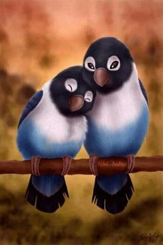 Animated Gif by jade Gif Animé, Animated Gif, Gifs, Cute Birds, Colorful Birds, Bird Feathers, Pet Shop, Beautiful Birds, Beautiful Places