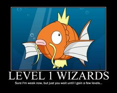 Level 1 Wizards be like. Very true... If you don't get this, we can't be friends.
