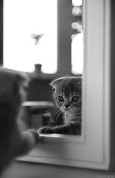 When will my reflection show....