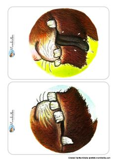 The Gruffalo - Body Parts Flashcards by Mambiatka Gruffalo Characters, Gruffalo Activities, Monster Co, Gruffalo's Child, The Gruffalo, Kindergarten Books, Movement Activities, Kids Education, Body Parts