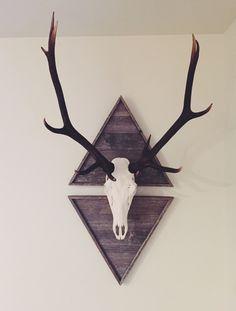 European mount #elk