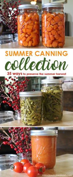 How To Can Summer Vegetables A Summer Canning Collection - Canning Summer Vegetables Is A Great Way To Preserve The Bounty Of A Summer Garden Or To Take Advantage Of In Season Summer Produce Sales Get The Details On Preserving Summer Produce Now I Had No Pressure Canning Recipes, Home Canning Recipes, Canning Tips, Pressure Cooking, Canning Food Preservation, Preserving Food, Canning Vegetables, Veggies, Water Bath Canning