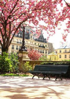 Park in Paris.