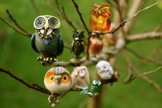 #owl collection