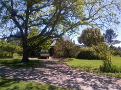 ha Farm in Harkerville, graceland, SOLE MANDATE Beautiful country style living, well positioned on the between Plett and Knysna, th Knysna, Private Property, Graceland, Country Style, Sidewalk, Home And Garden, Houses, Explore, Beautiful