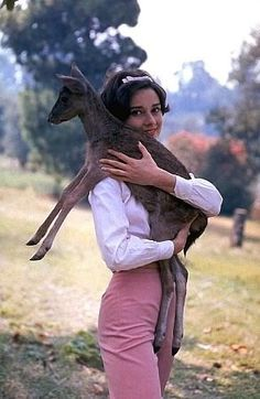 """Audrey Hepburn with pet fawn on the MGM backlot during filming of """"Green Mansions"""" (1959)."""