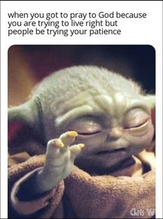 40 Assorted Memes Thatll Fill You With Good Humor - Yoda Funny, Yoda Meme, Funny Relatable Memes, Funny Quotes, Cartoon Quotes, Funny Humor, Yoda Quotes, Sherlock, Harry Potter