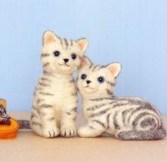 stripped kittens