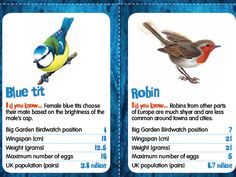 Big Card Birdwatch - Top Trumps style game:- A top trumps style game but with common birds that you are likely to see in your school grounds. Compare wingspan, weight, number of eggs laid and where the bird featured in Big Garden Birdwatch!