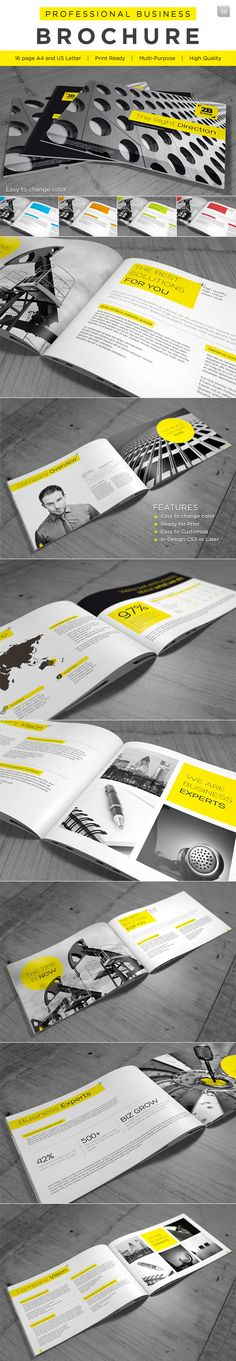 Professional Business Brochure by Andrej Sevkovskij, via Behance
