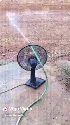 선풍기로 꽃밭에 물주기 :: 다나와 DPG