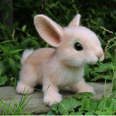 almost real looking cute needle felted bunny! almost real looking cute needle felted bunny! Baby Animals Super Cute, Cute Baby Bunnies, Felt Bunny, Cute Little Animals, Bunny Rabbit, Needle Felted Animals, Felt Animals, Needle Felting, Funny Animals