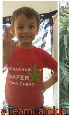 Kids are Killing Cancer with Cannabis. #TeamLandon