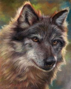 """Daily+Paintworks+-+""""Wolf+Smile""""+-+Original+Fine+Art+for+Sale+-+©+emily+Christoff-Flowers"""