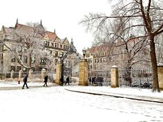 Winter at UChicago