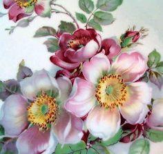 Wild Rose Schumann Arzberg Barvaria Golden Crown E R 1886 Plate Scalloped Edge   eBay