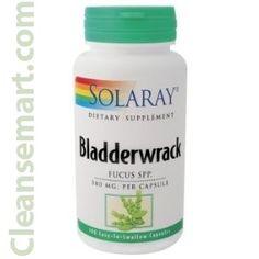 bladderwrack   fucus   bladderwrack seaseed   bladderwrack extract
