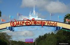 10 Things to Do at Disney without a Ticket!