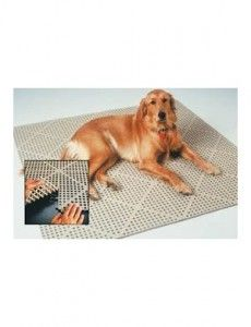 DriDek Dog and Cat Kennel Cage Liner Veterinarian or Groomer Flooring Interlocking Tiles Yellow >>> Find out more about the great product at the image link. (This is an affiliate link) Puppy Kennel, Diy Dog Kennel, Kennel Ideas, Whelping Puppies, Dog Kennels, Dog Kennel Flooring, Dog Boarding Kennels, Dog Yard, Dog Cleaning