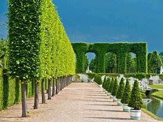 Gardens at Schwetzingen Palace, Schwetzingen, Germany. May, Thunder storms were in the area. German Architecture, Neoclassical Architecture, Garden Hedges, Garden Landscaping, Topiary Trees, Topiaries, Labyrinth Maze, Baroque Design, Plant Cuttings