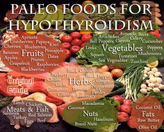 Paleo foods for treating Hypothyroidism is a hot topic lately. This condition seems to be affecting a lot of women and it's high time to address a few foods that will jump start your thyroid…