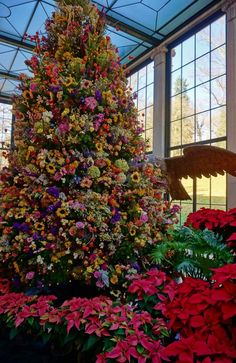 Since the the dried flower tree at Winterthur has been delighting guests. All of the flowers are collected and dried from the property throughout the previous season! Each year it's different depending on what performed well in the gardens that year!