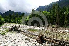 Mountain River In Tatra Mountains Stock Image - Image of cart, bank: 59258303 Tatra Mountains, Poland, Cart, River, Stock Photos, Nature, Image, Covered Wagon, Naturaleza
