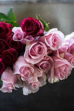 Valentine Treat   ZsaZsa Bellagio - Like No Other