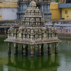 Reposting @livingtheqlife90: The Temple pools in India are quite fascinating.
