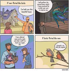 If men flirted like birds (by Kasia Babis)
