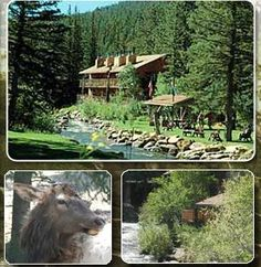 Ponderosa Lodge in E