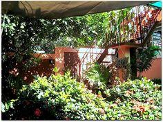 Casa Yolanda y Tomás, jardín. Vinales, Cuba, Outdoor Furniture, Outdoor Decor, Hammock, Home Decor, Terrace, Entryway, Gardens