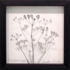 Heather Power - printmaker - at Obsidian Art http://www.shop.obsidianart.co.uk/collections/printmaking/products/fields-edge-iii-heather-power