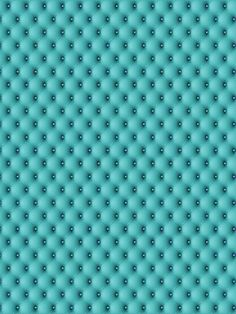 Tufted Teal / 514