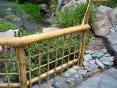 Cl Ture En Bambou Sur Pinterest Cl Tures De Jardin En Bambou Phyllostachys Nigra Et Culture