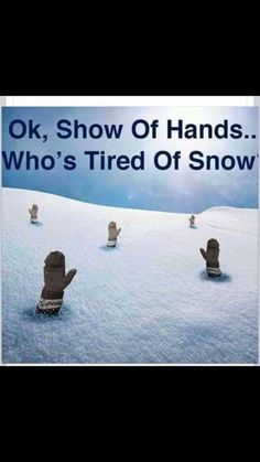 d923d7c62da3 Dear Winter I m breaking up with you quotes quote winter snow cold ...