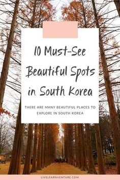 You need to see these beautiful spots in South Korea! #travel #traveltips #Asiatravel