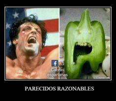 Parecidos razonables: Rambo