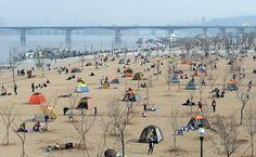 Han River Park 한강 공원