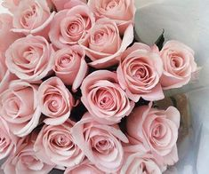 flowers, rose, and pink resmi
