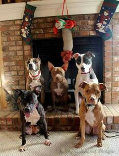 We are just Waiting for Santa to arrive!