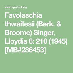 Favolaschia thwaitesii (Berk. & Broome) Singer, Lloydia 8: 210 (1945) [MB#286453]