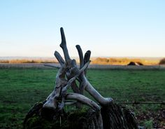 Wood Sculpture down onto the levels.