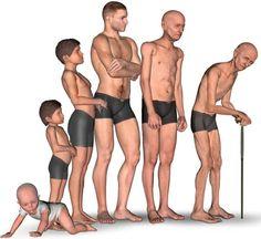 NutriçãoGlobalOm: Sarcopenia, perda de massa muscular na idade