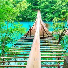 """皆さんは「夢の吊り橋」をご存知ですか?この橋は静岡県にある橋で、ネットを中心に近年注目を集めているんです。今回はそんな""""日本一渡りたい絶景橋""""として有名な「夢の吊り橋」の情報を詳しくご紹介。是非一度訪れてみてくださいね。"""
