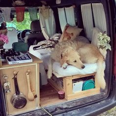 Woman Restores Old Van To Travel Around The World With Her Dog