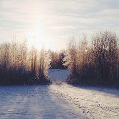 winter glow.