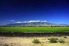 Mt. Graham, Safford, AZ
