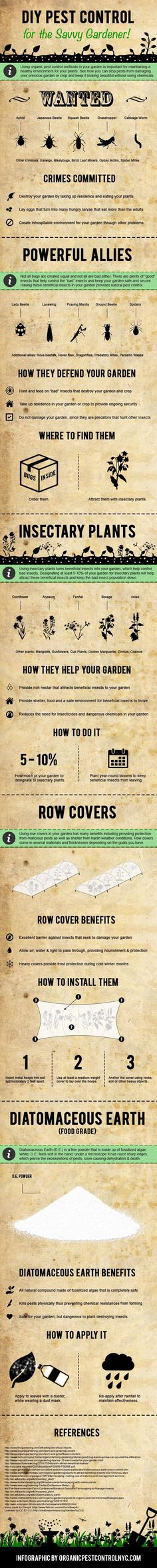 DIY Pest Control for the Savvy Gardener! #infographic #DIY #PestControl #Gardening